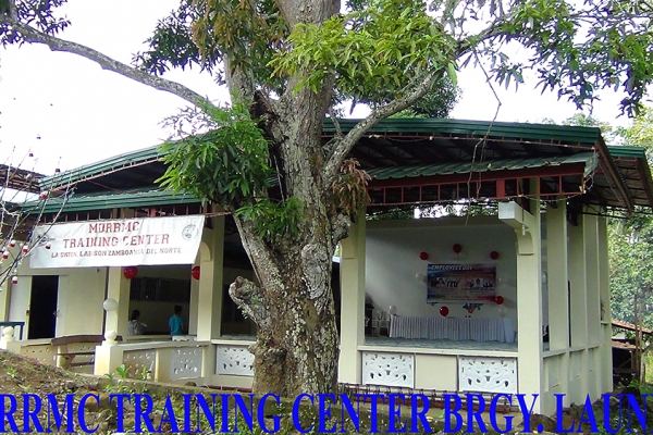 mdrrmc-training-center-brgy-launion5D754E07-A232-4EA1-60BD-A3229DC199E2.jpg